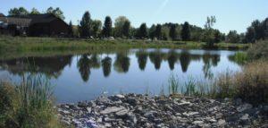 Water & Wastewater Design